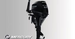 ForuStroke 9.9 hp