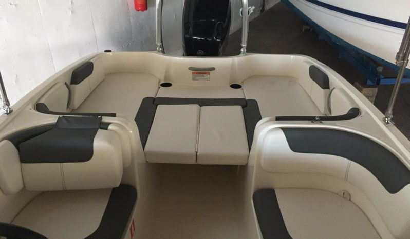 Bayliner Element E6 completo