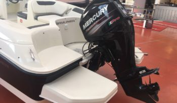 Bayliner Element E6 usato 2015 pieno